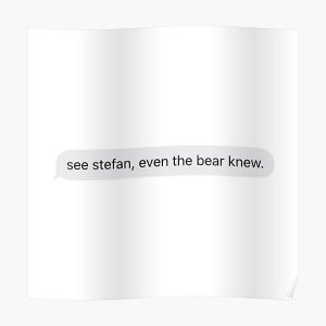 See Stefan, even the bear knew Poster RB2904product Offical Vampire Diaries Merch